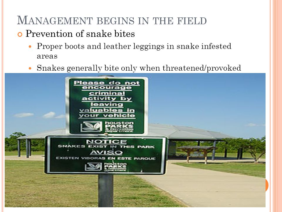 Management begins in the field