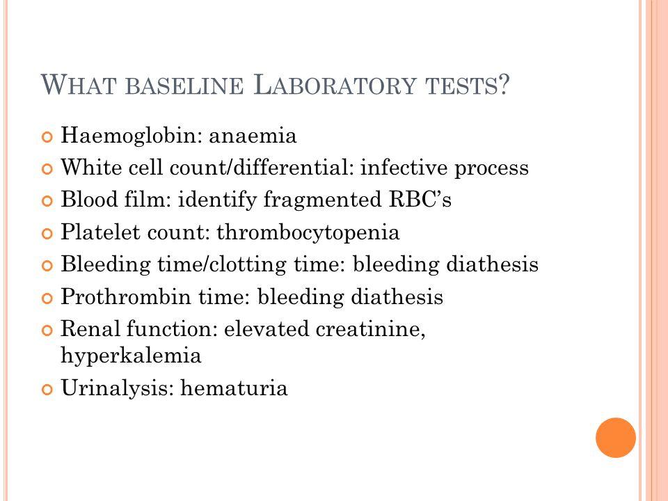 What baseline Laboratory tests