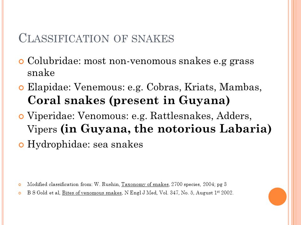 Classification of snakes