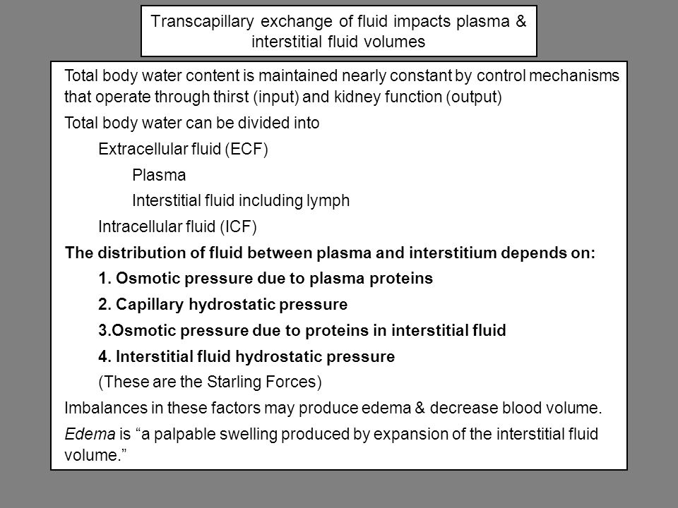 Transcapillary exchange of fluid impacts plasma & interstitial fluid volumes