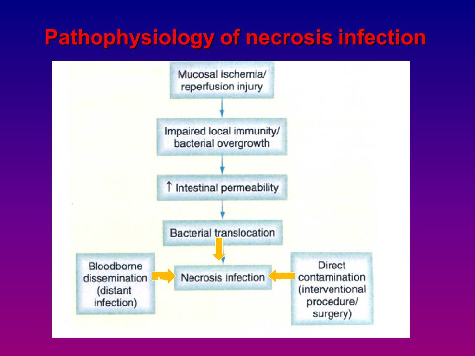 Pathophysiology of necrosis infection