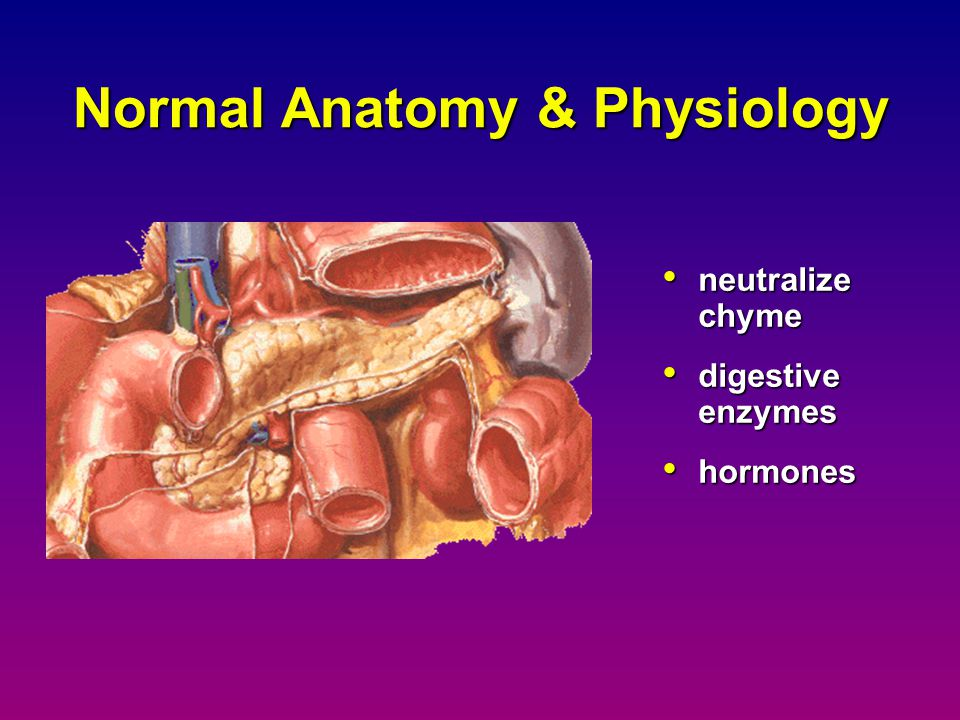 Normal Anatomy & Physiology