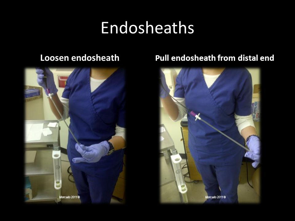 Pull endosheath from distal end