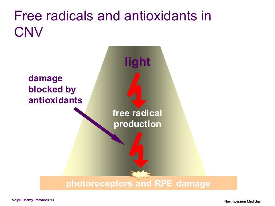 Free radicals and antioxidants in CNV
