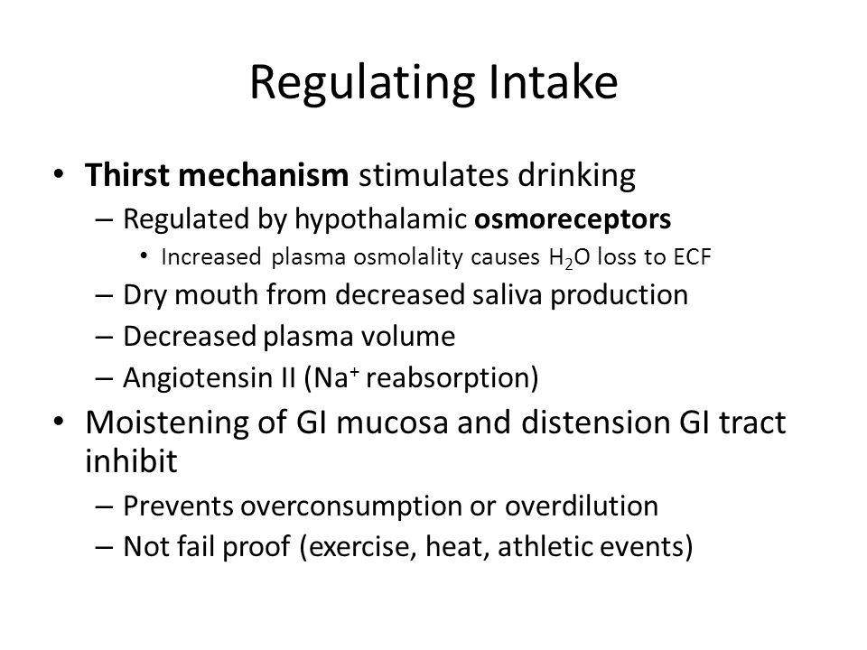 Regulating Intake Thirst mechanism stimulates drinking