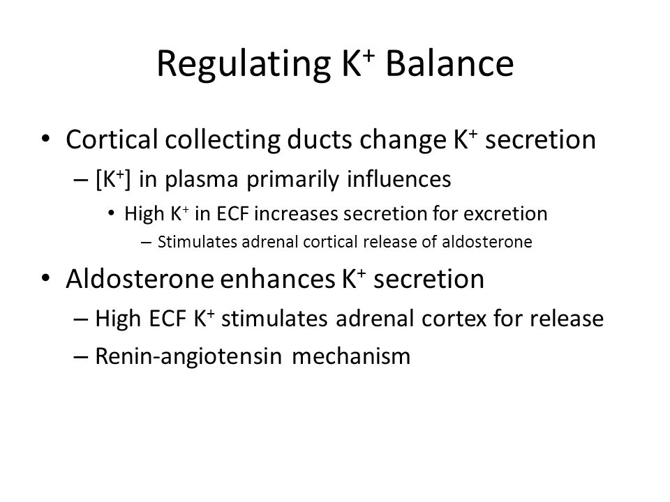 Regulating K+ Balance Cortical collecting ducts change K+ secretion