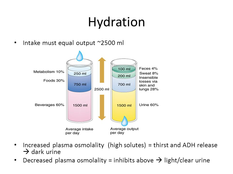 Hydration Intake must equal output ~2500 ml
