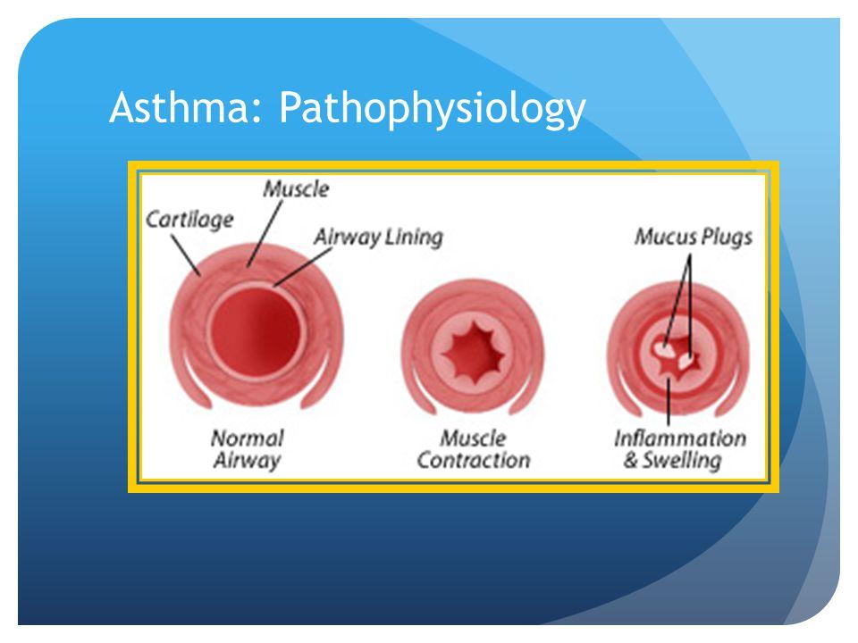 Asthma: Pathophysiology