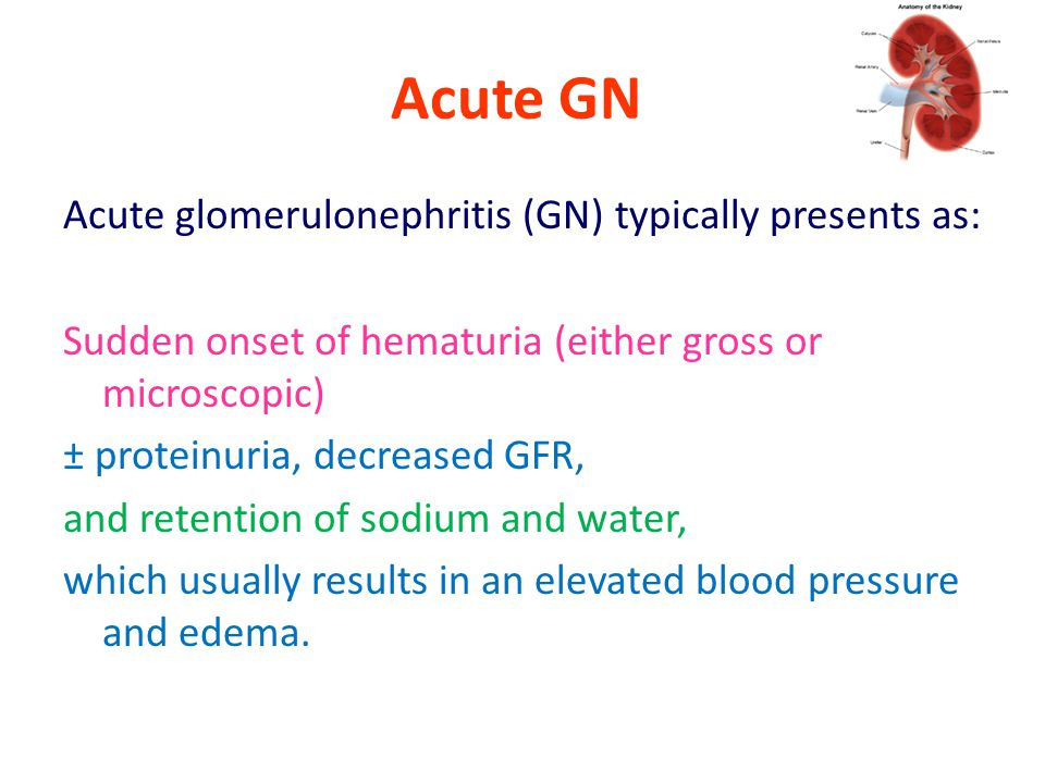 Acute GN