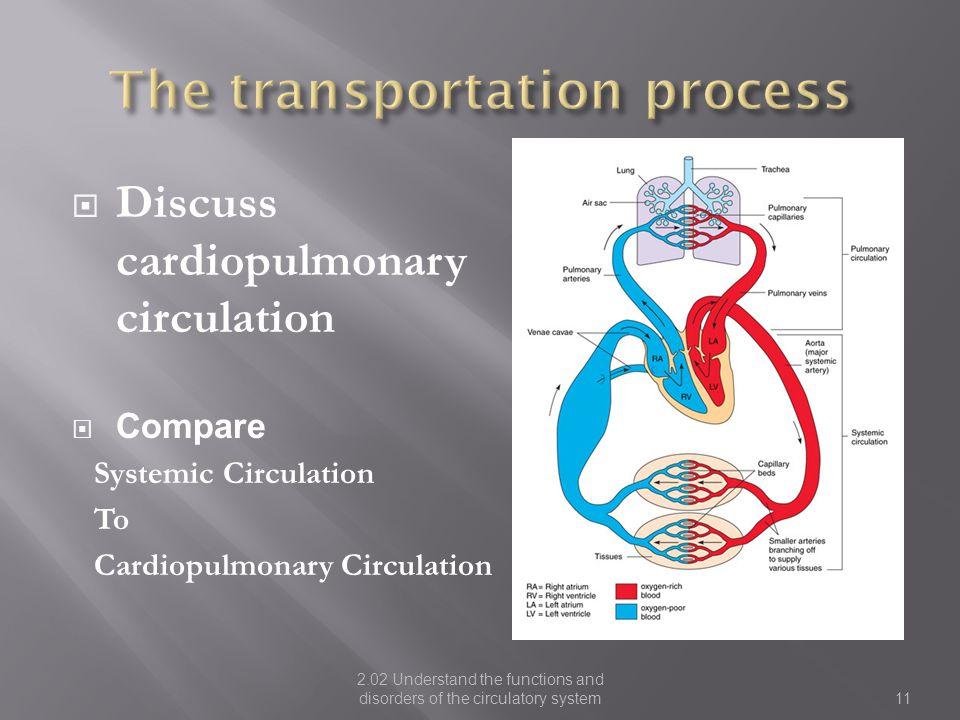 The transportation process