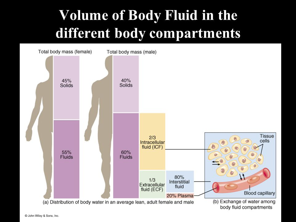 Volume of Body Fluid in the different body compartments