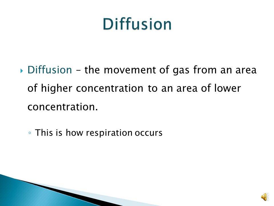 Diffusion Diffusion – the movement of gas from an area of higher concentration to an area of lower concentration.