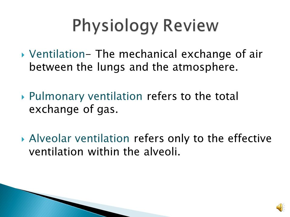 Physiology Review Ventilation- The mechanical exchange of air between the lungs and the atmosphere.