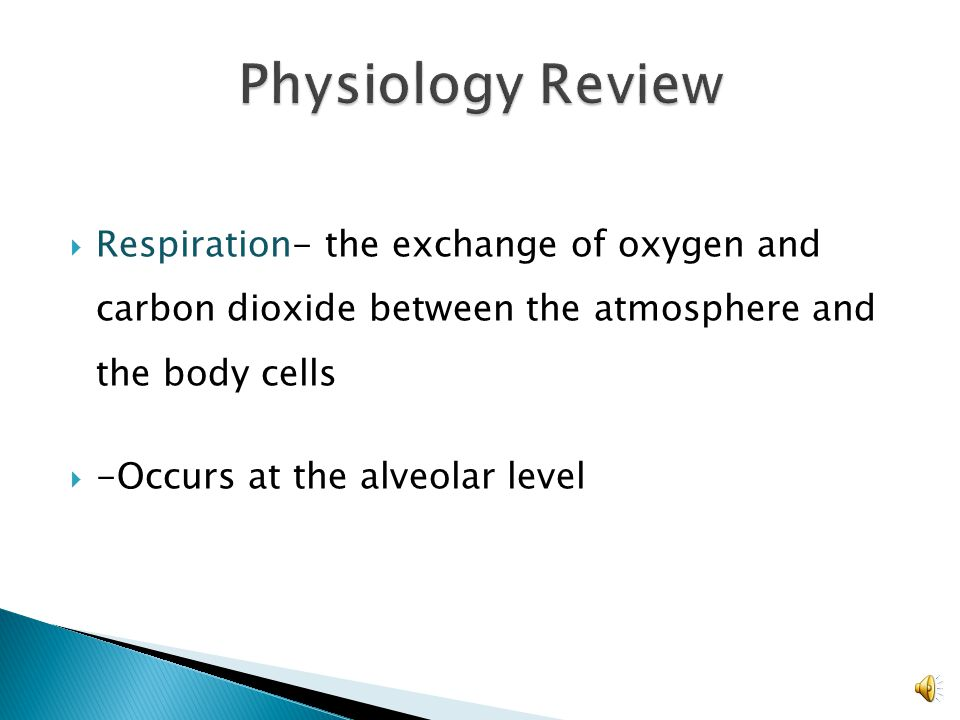 Physiology Review Respiration- the exchange of oxygen and carbon dioxide between the atmosphere and the body cells.