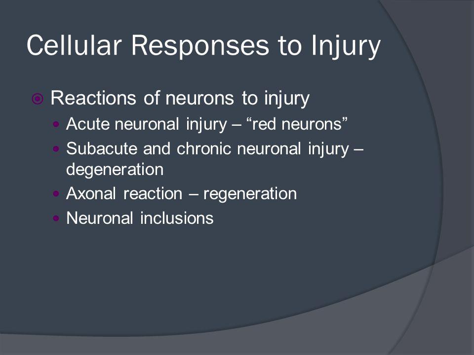 Cellular Responses to Injury