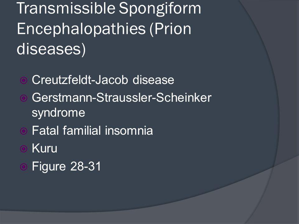 Transmissible Spongiform Encephalopathies (Prion diseases)
