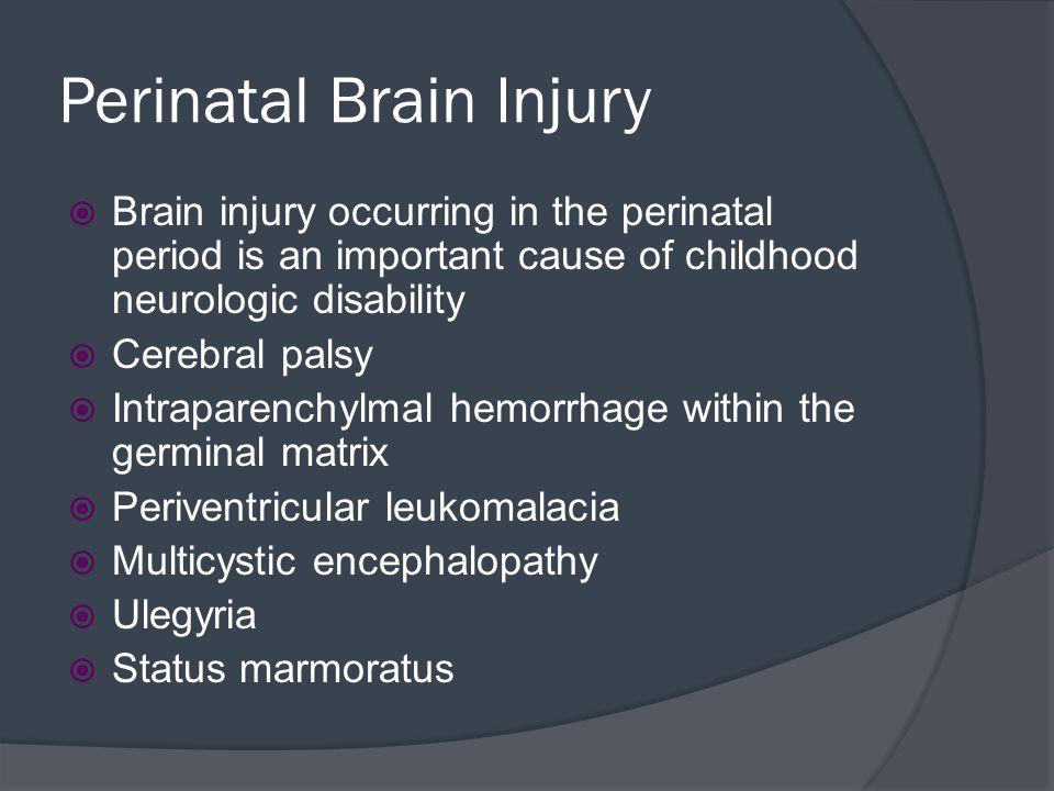 Perinatal Brain Injury