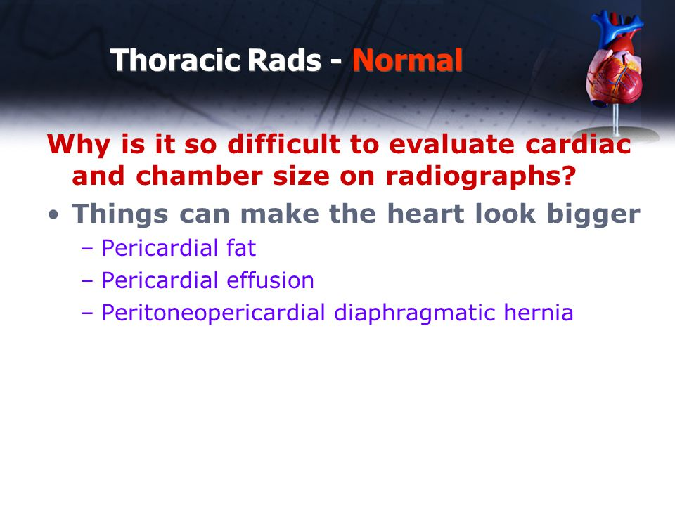 Thoracic Rads - Normal Why is it so difficult to evaluate cardiac and chamber size on radiographs Things can make the heart look bigger.