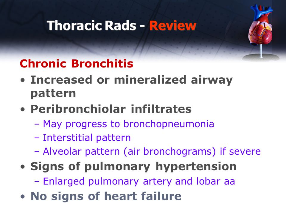 Thoracic Rads - Review Chronic Bronchitis