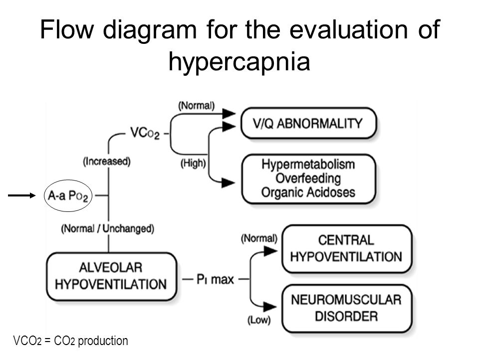 Flow diagram for the evaluation of hypercapnia