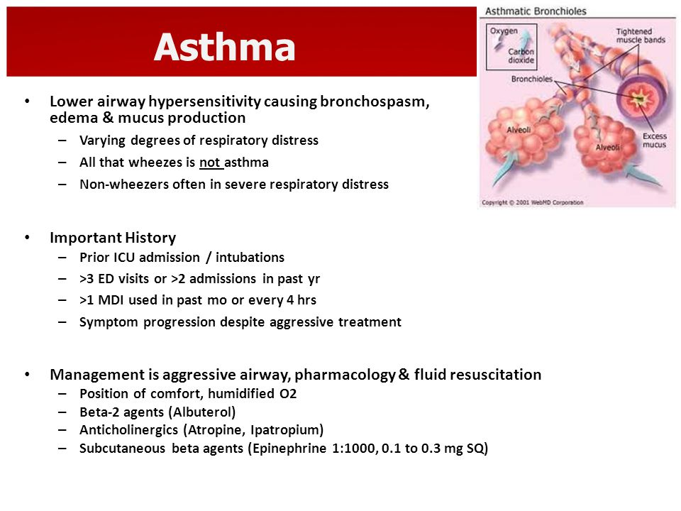 Asthma Lower airway hypersensitivity causing bronchospasm, edema & mucus production.