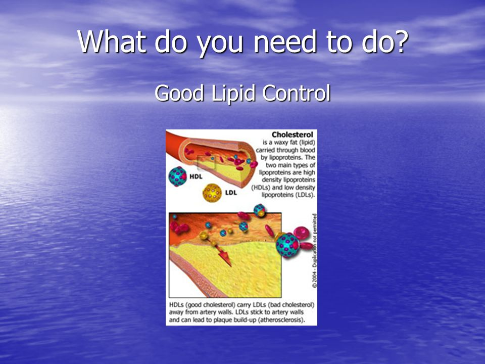 What do you need to do Good Lipid Control