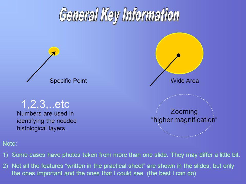 General Key Information
