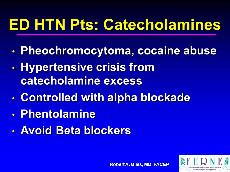 ED HTN Pts: Catecholamines