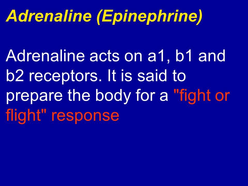 Adrenaline (Epinephrine)