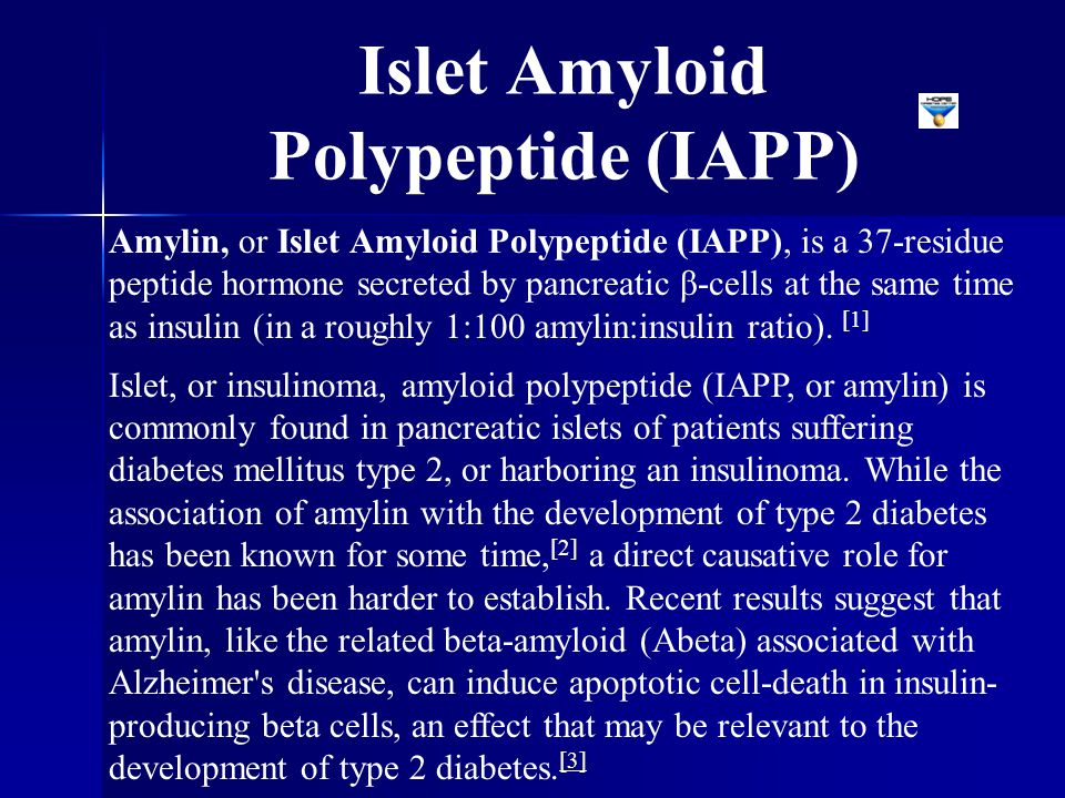Islet Amyloid Polypeptide (IAPP)