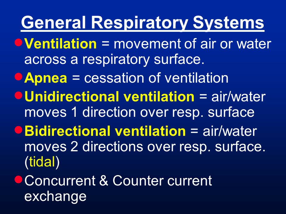 General Respiratory Systems