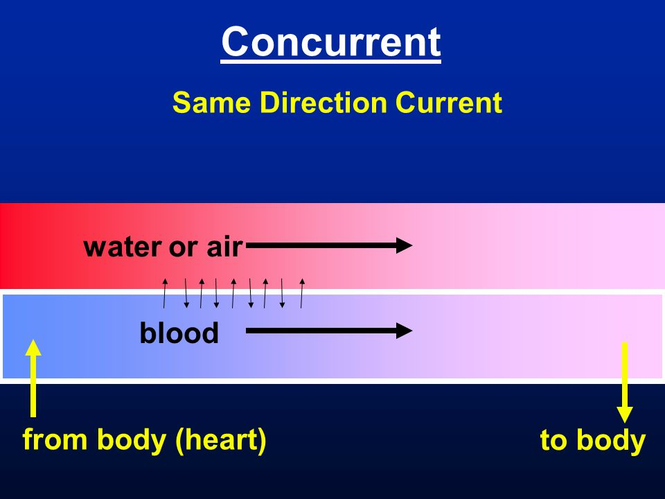 Concurrent Same Direction Current water or air blood from body (heart)