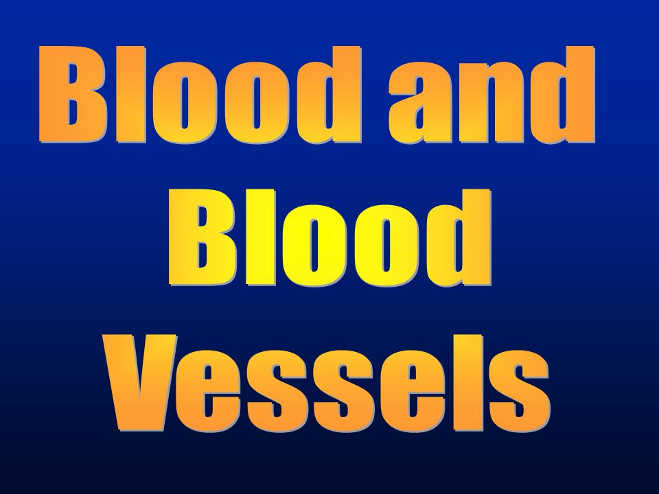 Blood and Blood Vessels