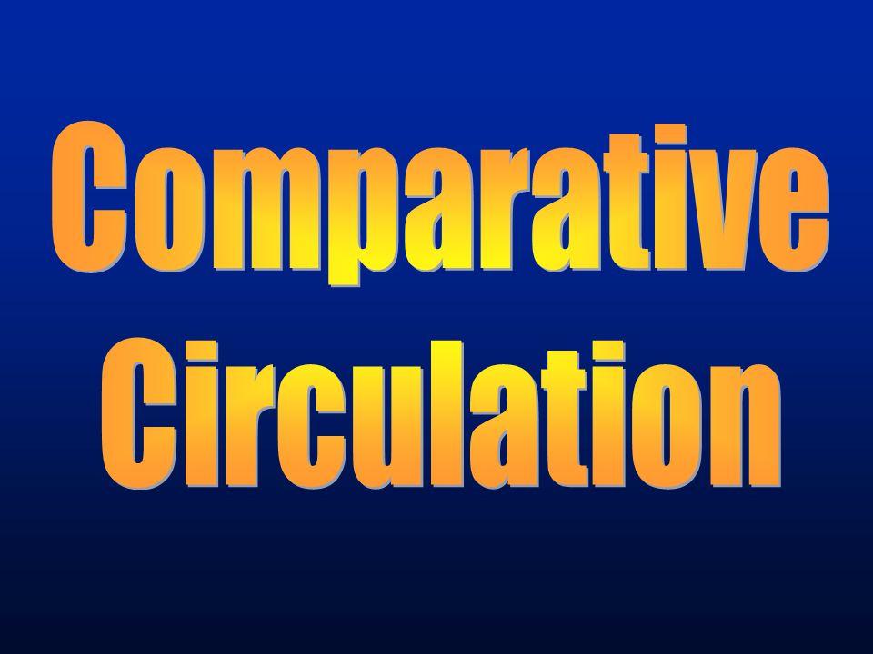 Comparative Circulation