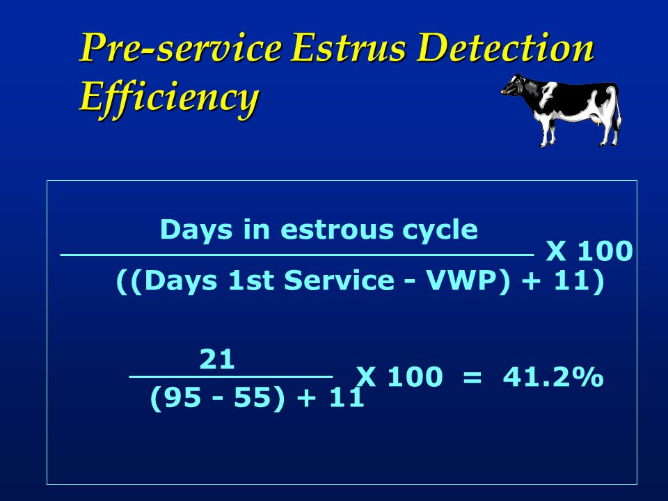 Pre-service Estrus Detection Efficiency
