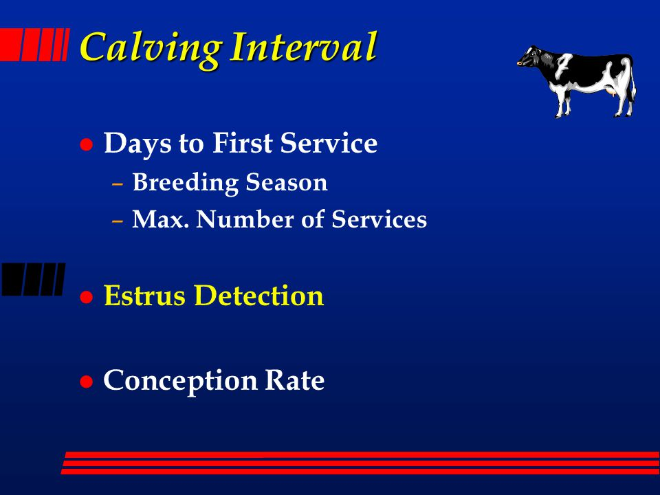 Calving Interval Days to First Service Estrus Detection