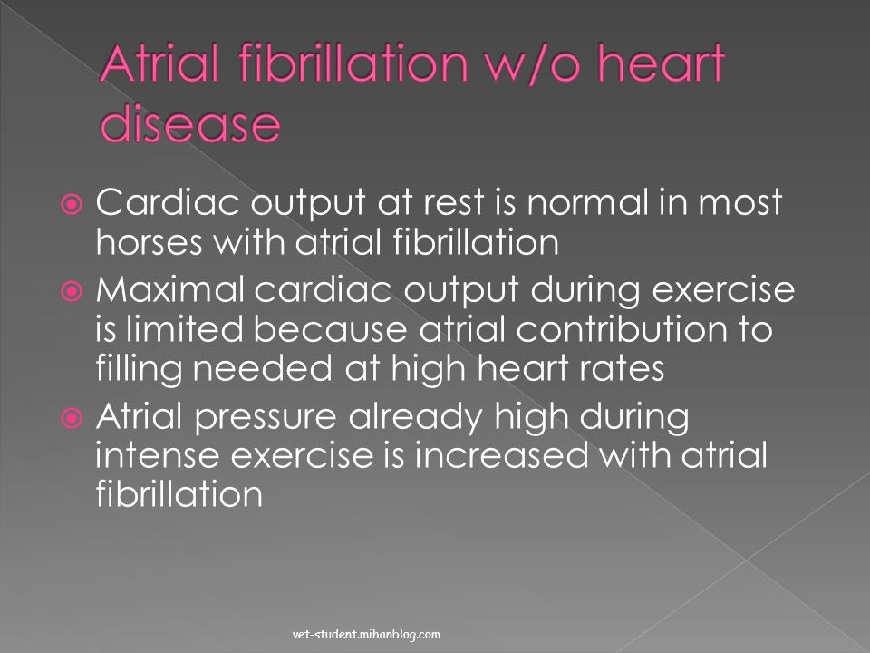 Atrial fibrillation w/o heart disease