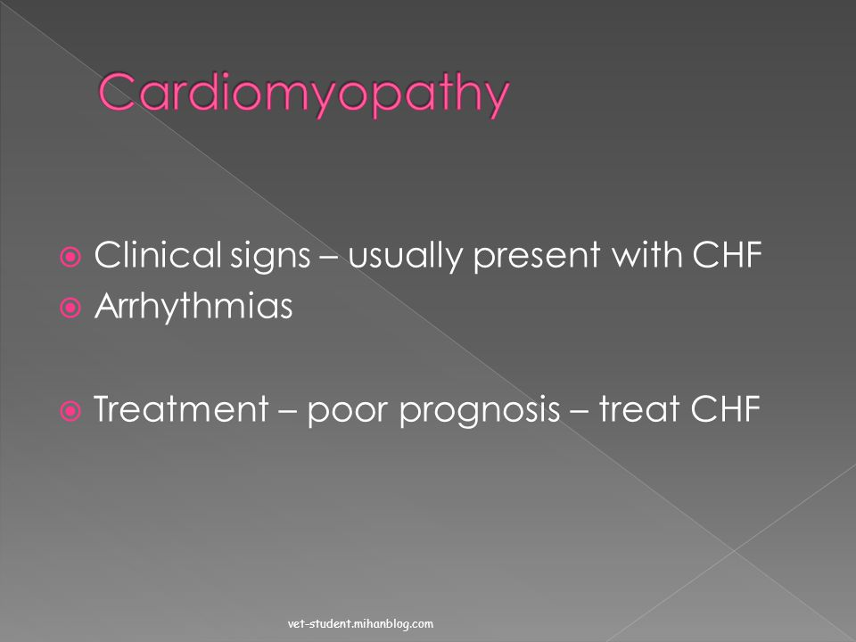 Cardiomyopathy Clinical signs – usually present with CHF Arrhythmias