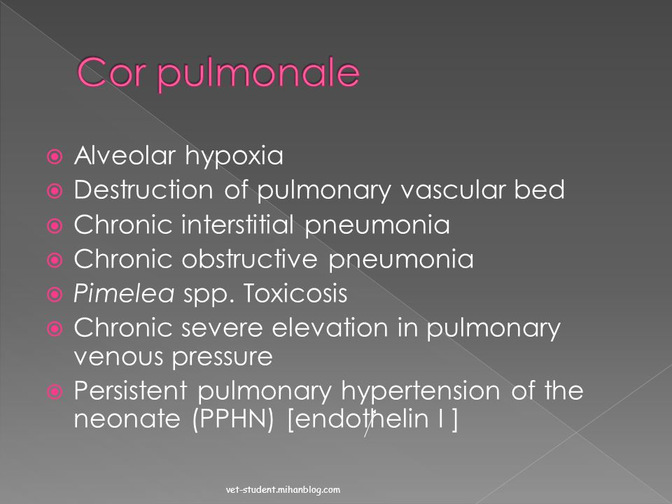 Cor pulmonale Alveolar hypoxia Destruction of pulmonary vascular bed