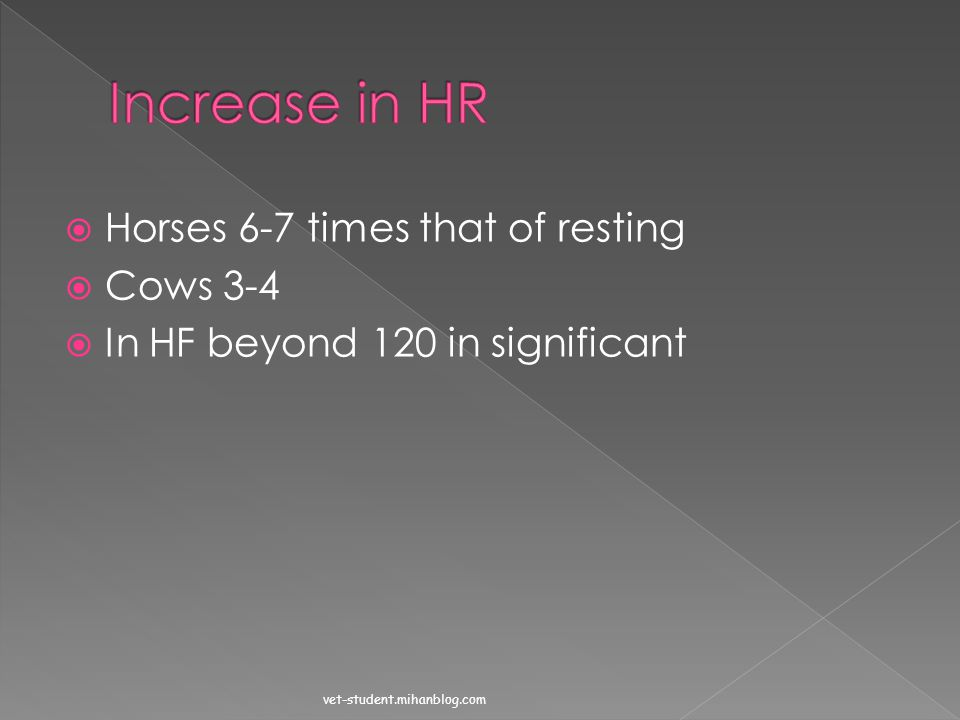 Increase in HR Horses 6-7 times that of resting Cows 3-4