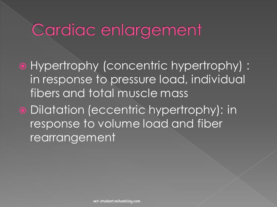 Cardiac enlargement Hypertrophy (concentric hypertrophy) : in response to pressure load, individual fibers and total muscle mass.
