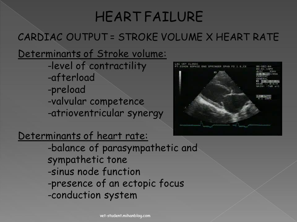 HEART FAILURE CARDIAC OUTPUT = STROKE VOLUME X HEART RATE
