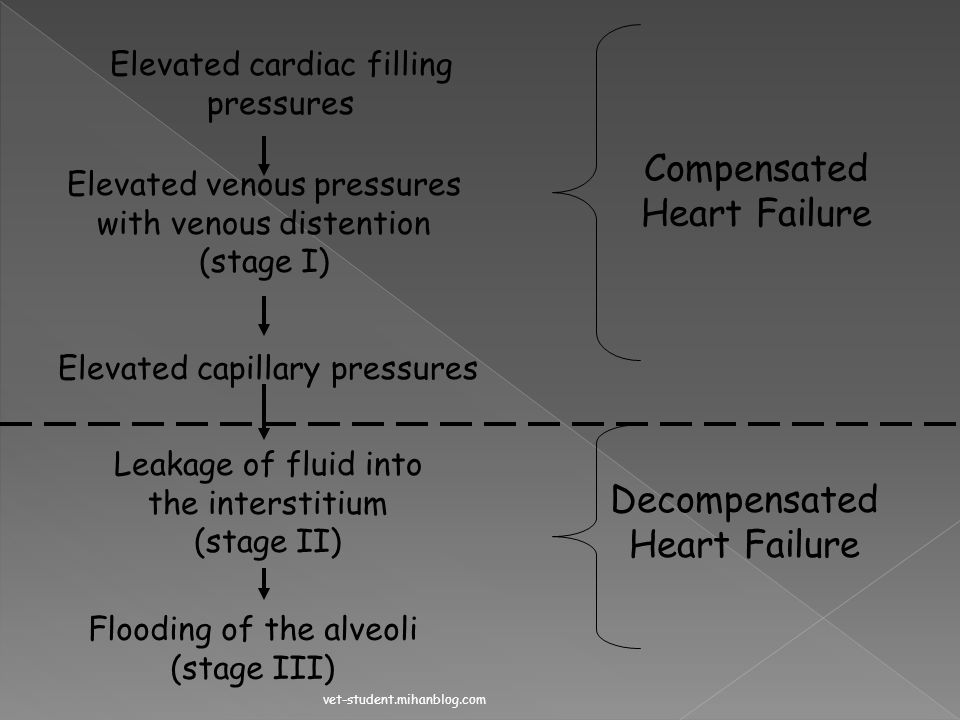 Compensated Heart Failure