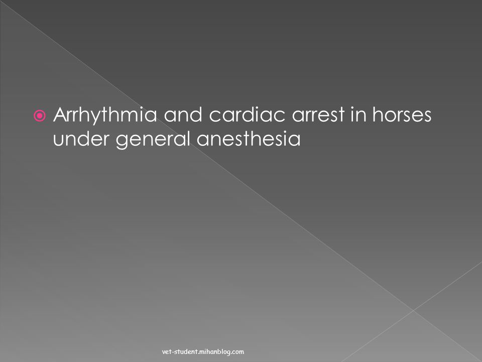 Arrhythmia and cardiac arrest in horses under general anesthesia