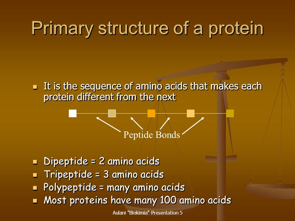 Primary structure of a protein