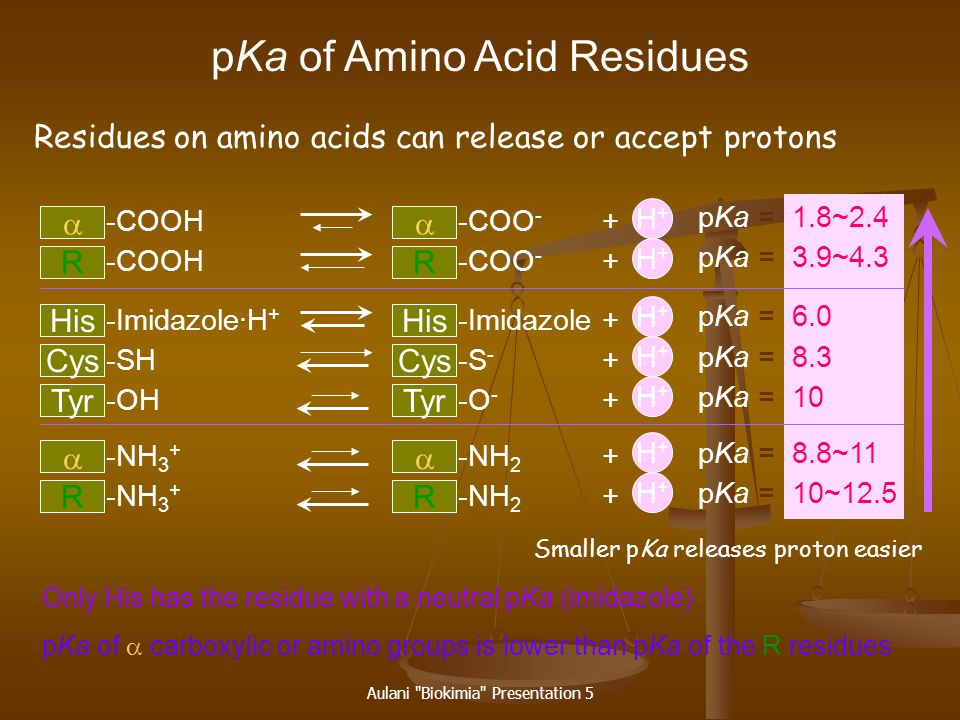 pKa of Amino Acid Residues