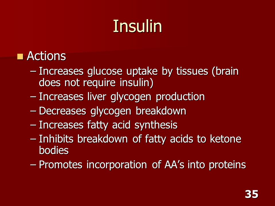 Insulin Actions. Increases glucose uptake by tissues (brain does not require insulin) Increases liver glycogen production.