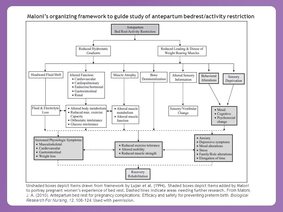 Maloni's organizing framework to guide study of antepartum bedrest/activity restriction