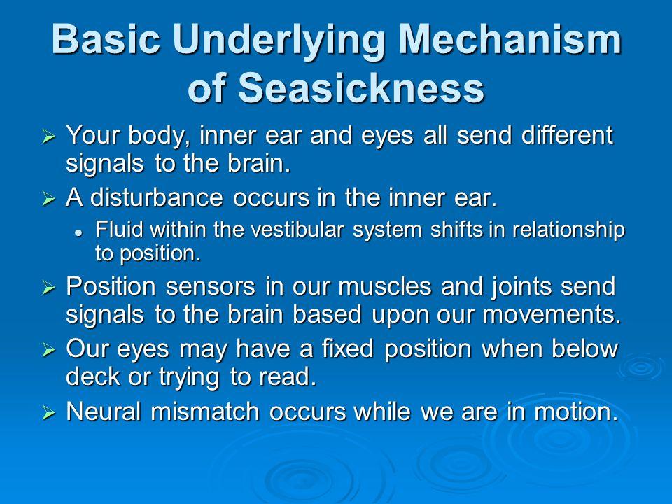 Basic Underlying Mechanism of Seasickness