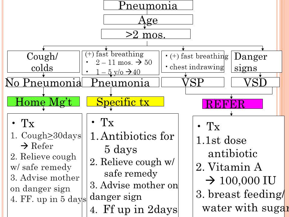 Pneumonia Age >2 mos. No Pneumonia Pneumonia VSP VSD Home Mg't